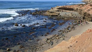 Photo of Low Tide in the Tidepools at Cabrillo