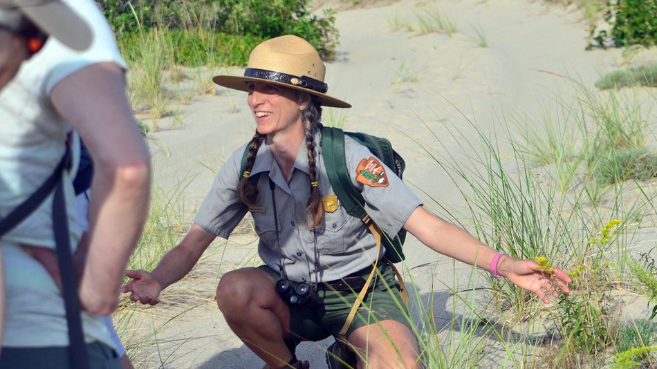 A ranger crouches in a sandy dune landscape pointing to a flowering plant.