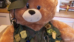 stuffed bear wearing Junior Ranger vest adorned with badges