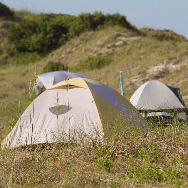 Three tents among the grassy dunes