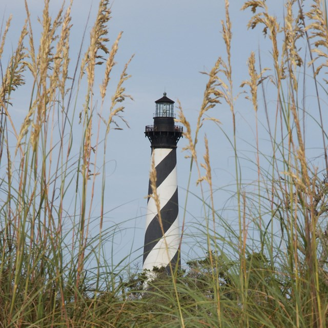 Cape Hatteras Lighthouse and Sea Oats