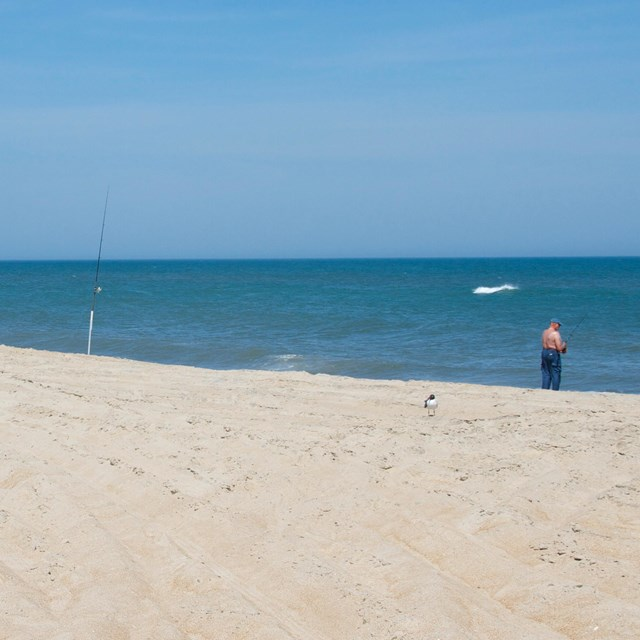 Fisherman on beach with ORV