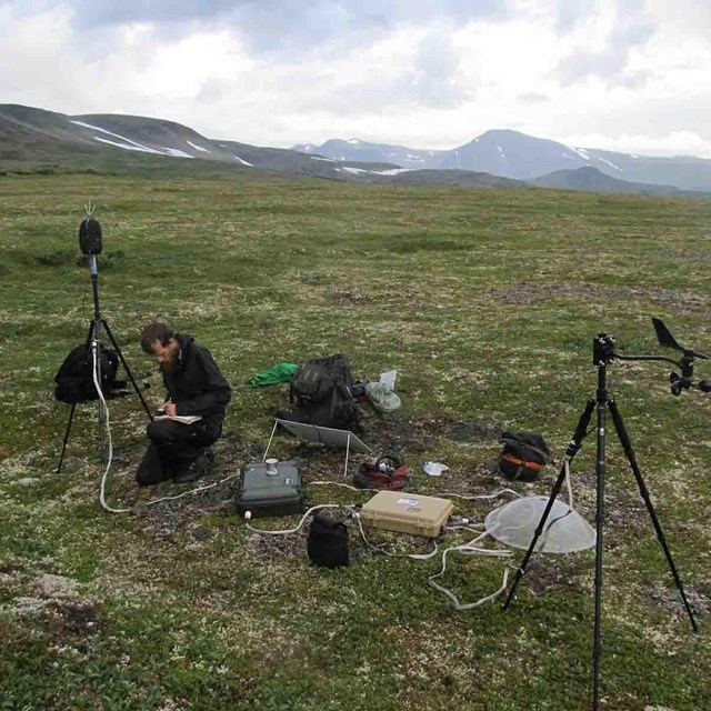 A researcher sets up sound recording equipment.