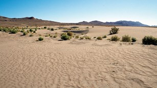 A sandy desert stretches out to a rocky desert setting.