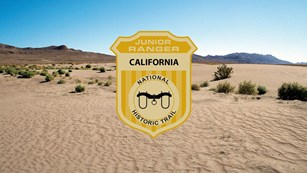 Sand fills the foreground and leads to a vast desert landscape. A junior ranger badge added.