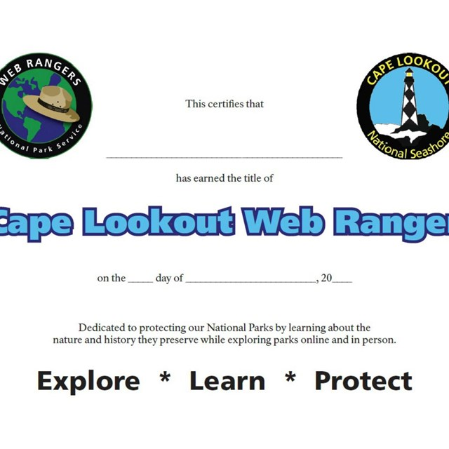 Web Ranger completion certificate.