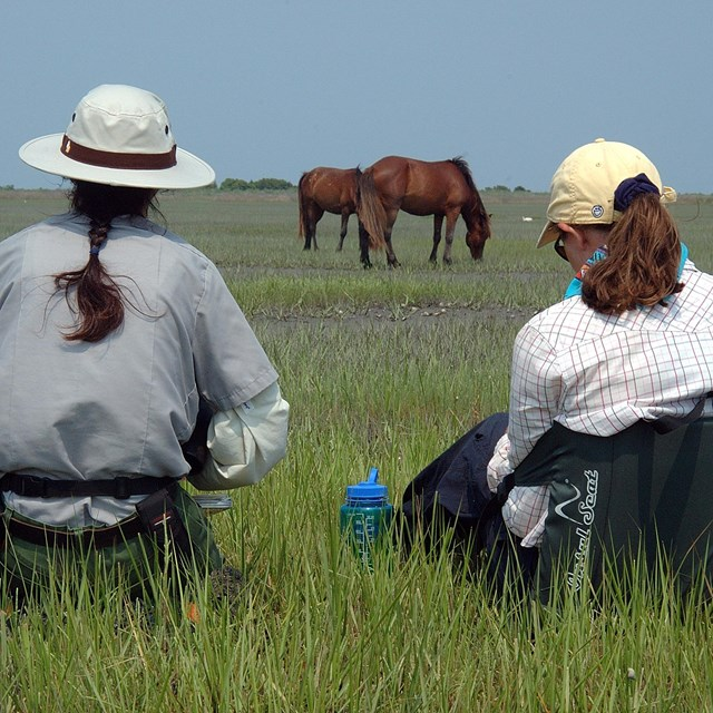 A ranger and visitor watch horses from a safe distance.