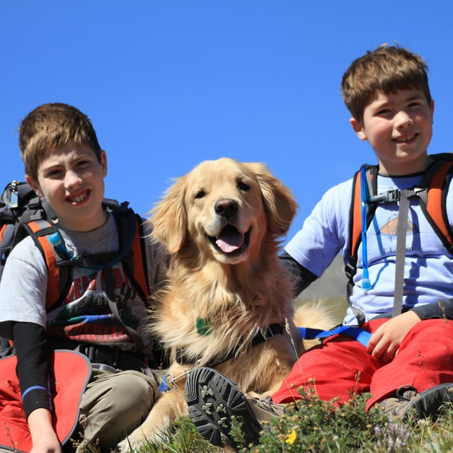 Two kids with their golden retriever dog