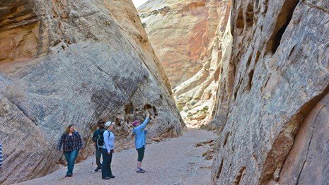 Hikers looking at the rock walls on the Capitol Gorge trail