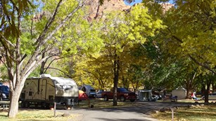 RVs, tents, cars, and vans in a green, shaded campground, with some fall colors.