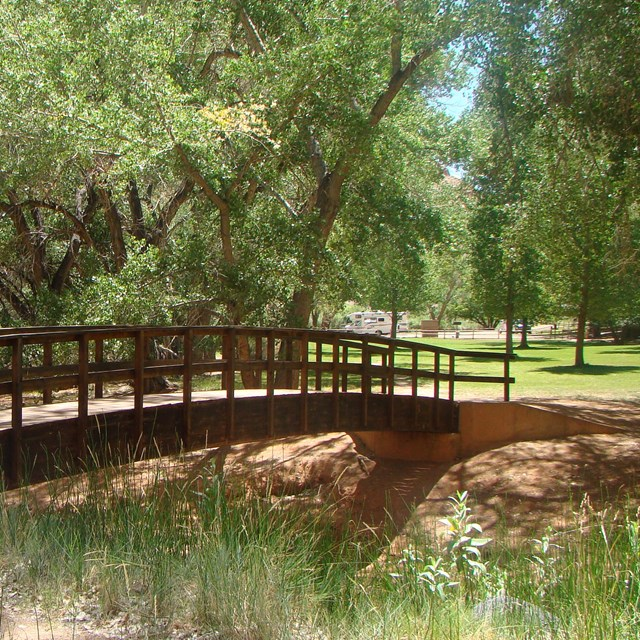 Dark brown wooden bridge over stream with green grass and trees around it.