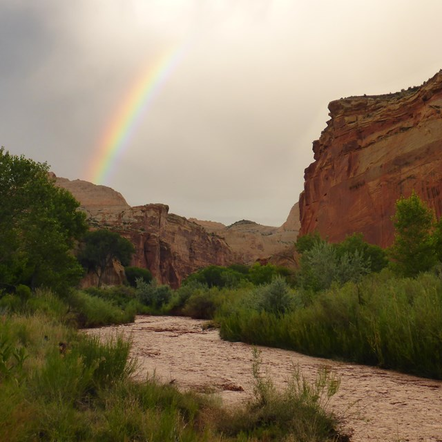 Reddish brown river flowing between green banks, with cliffs, a stormy sky, and rainbow.