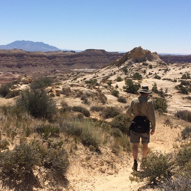 Hiker walking along a dirt trail, with desert and mountains views.
