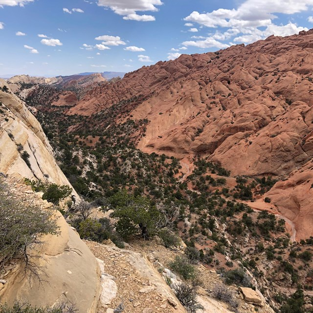 Deep canyon in center, with reddish rock slopes on one side, and white cliffs on the other.
