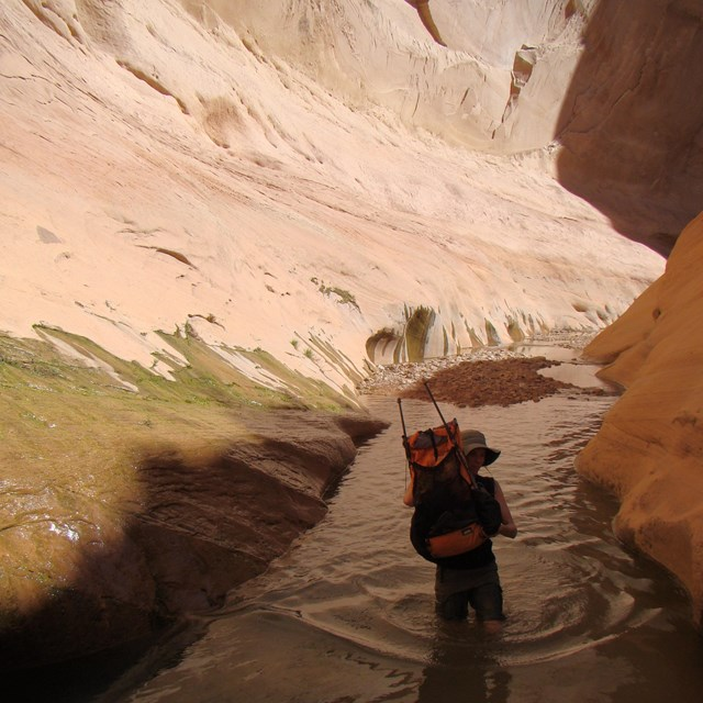 Narrow canyon filled with water, with a hiker wading through the water.