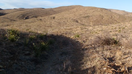 Views of the Chihuahuan Desert along the Guadalupe Ridge Trail