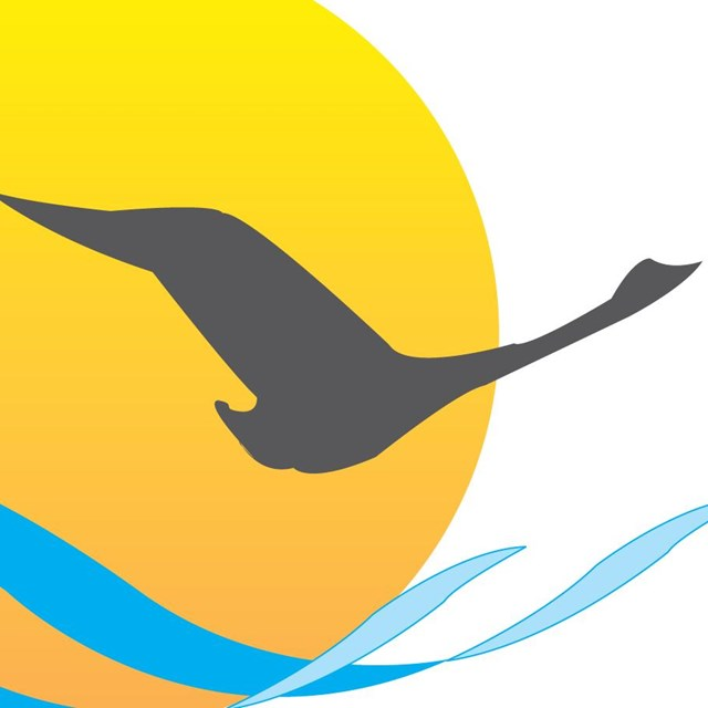 logo for the Chesapeake Bay Program - bird flying above water near marsh