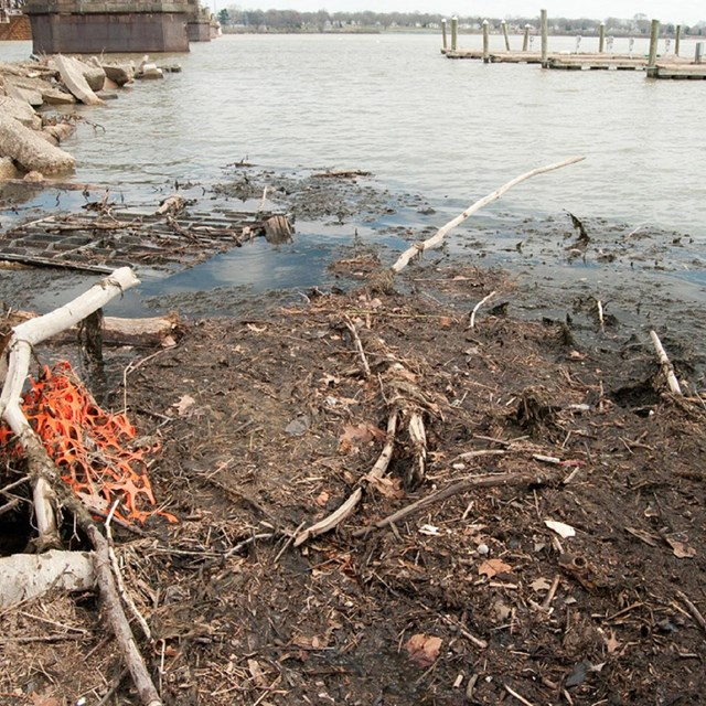 Trash along the shoreline of the Susquehanna River