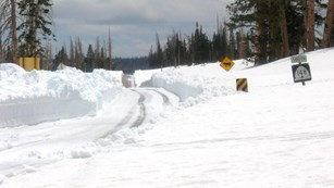 Picture of road winding through meadows of white snow + road caution signs.