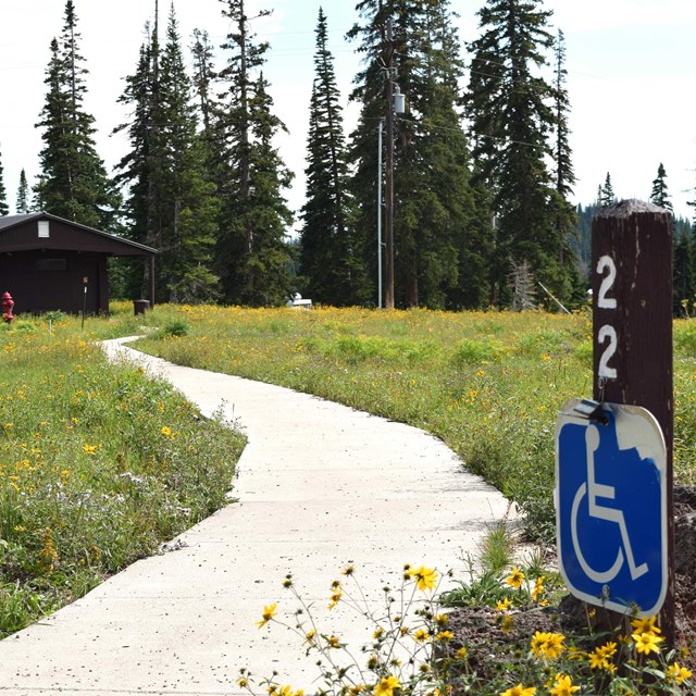 Wheelchair accessible sign by paved path leading to restroom. Yellow wildflowers on the perimeter.
