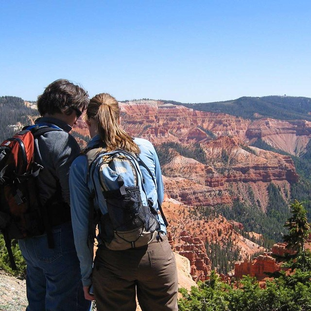 A couple looking at something near a overlook.