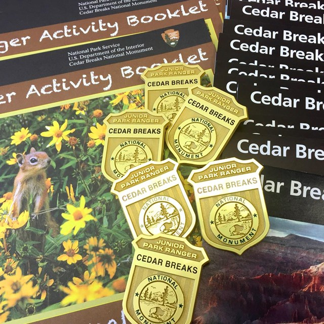 Close up photo of Cedar Breaks brochures, books and Jr. Ranger badges.