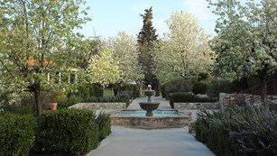 A landscaped formal path with a fountain. Trees are blooming.