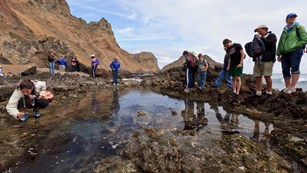 Visitors at tidepools along bluffs. ©Tim Hauf, timhaufphotography.com