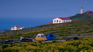 Camping tents on Anacapa Island. ©Tim Hauf, timhaufphotography.com