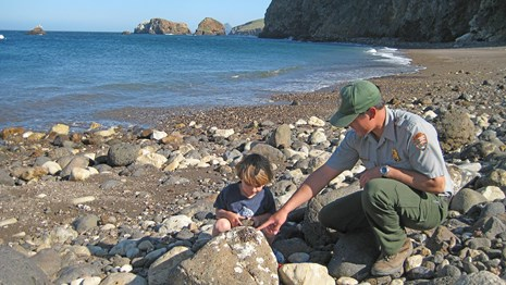boy with ranger on rocky beach looking at crab