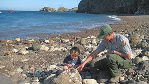 Ranger with boy on beach looking at sea shell.