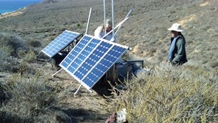 Staff installing solar panels for bald eagle webcam.
