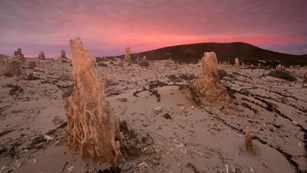 Caliche forest at sunset. ©Tim Hauf, timhaufphotography.com