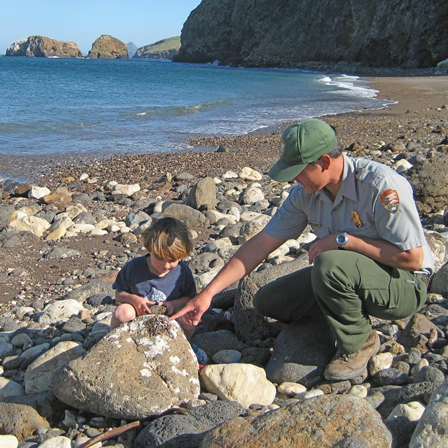 Park ranger and visitor on beach.
