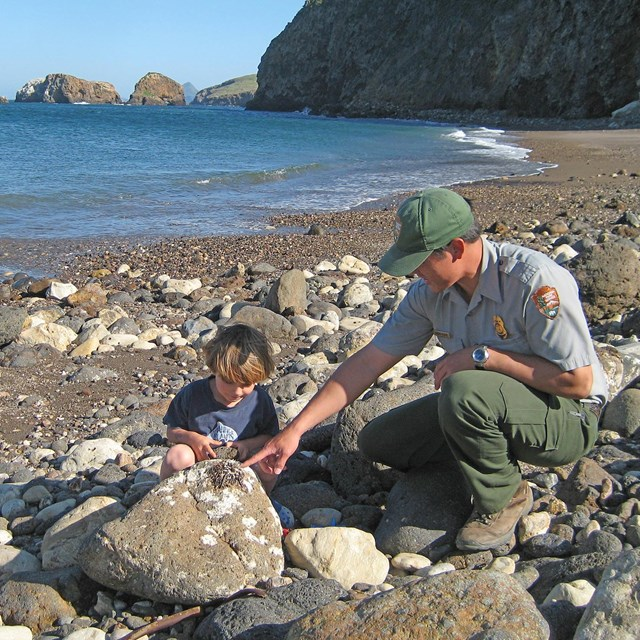 Ranger with boy on beach looking at rock.