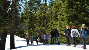 Students snowshoe with a ranger at Crater Lake.