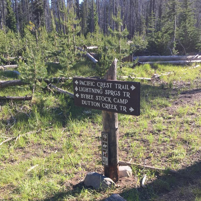 trail and campground directional sign