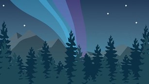 Illustration of the northern lights over a forest at night