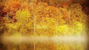 Yellow and orange hillside reflected onto lake with fog hovering over water