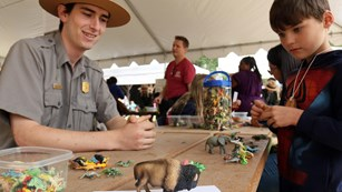 Park ranger and young boy studying toy bison figure