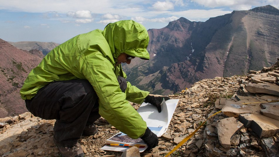 Researcher examines plant plot survey sheet on the top of a mountain.