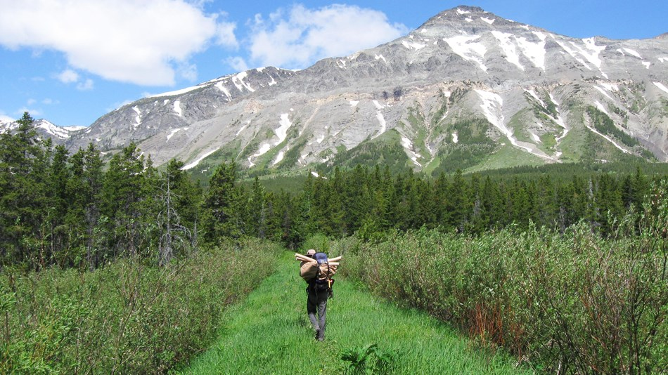 A researcher with a pack full of equipment hikes toward a looming mountain.