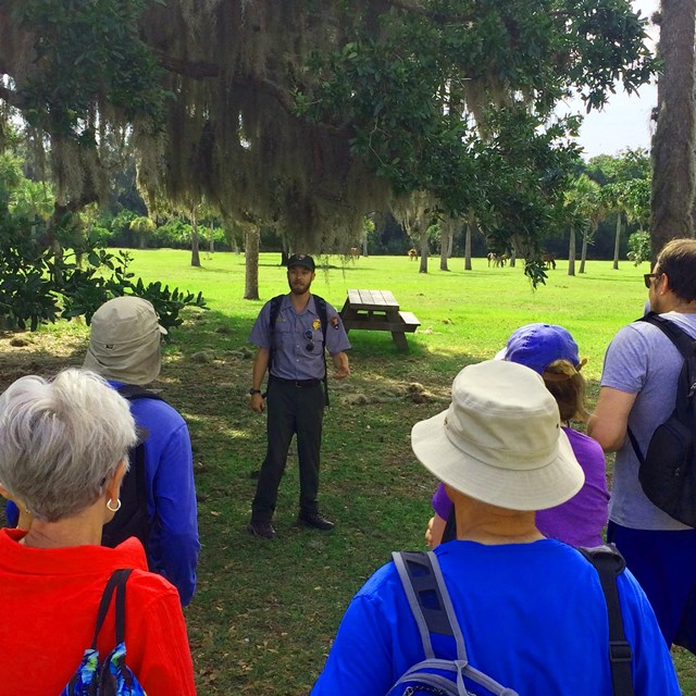 park ranger stands under large live oak tree speaking to a group of visitors