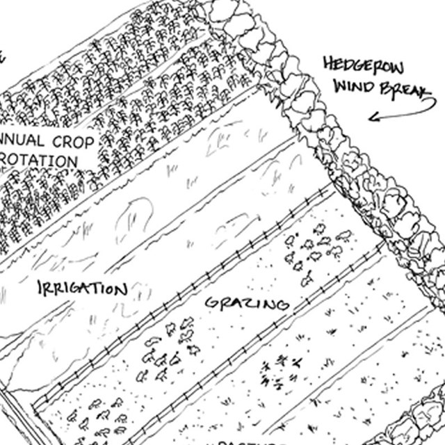 Conceptual site plan shows the farm organized around its historical patterns.