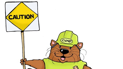 A cartoon otter is holding a construction sign and wearing a hardhat and safety vest.