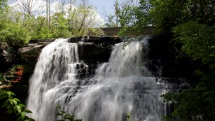 Brandywine Falls in the Summer
