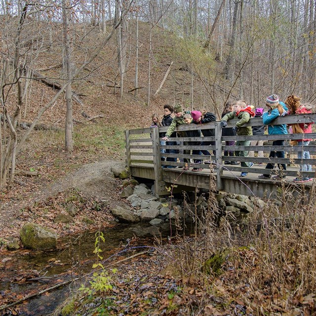 Students peer over the railing of a bridge at a stream below as a ranger gestures toward the water
