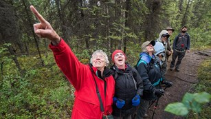 a group of visitors excitedly point into a forest