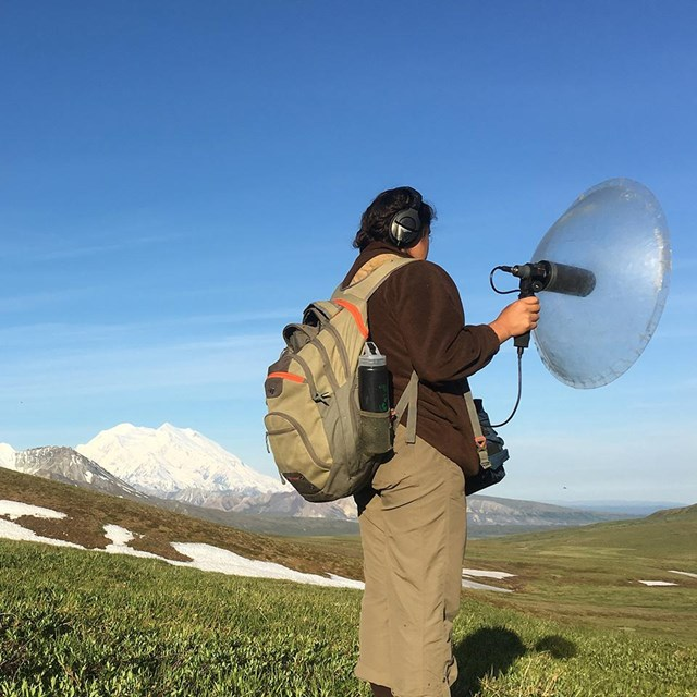 researcher holds sound equipment with mount denali in the background
