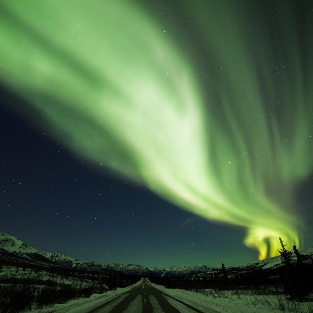 green aurora over a snowy, forested road